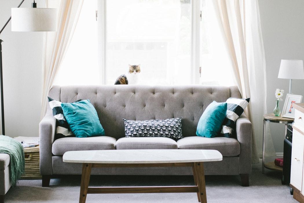 photo déco d'un salon avec un plan sur le canapé